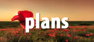 B2B plans page button