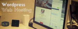 B2B Web Hosting - Best Hosting Options