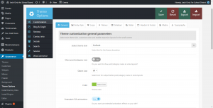Example wp-admin theme settings