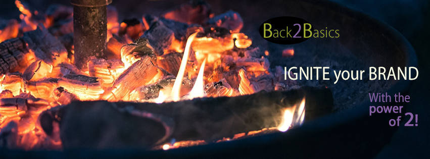 Ignite Your Business with Back2Basics, LLC