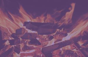 Back2Basics Digital Brand Management Agency is setting brands on fire
