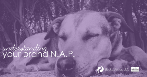 Understanding N.A.P. or nap